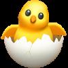hatching-chick_1f423